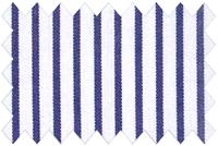 Bespoke shirt fabric 54006